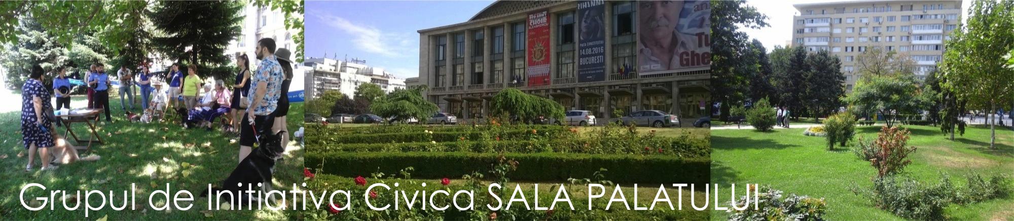 Grupul de Initiativa Civica Sala Palatului